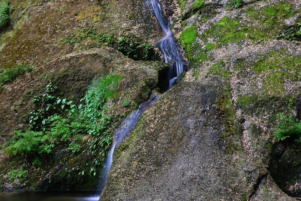 Brook, Water, Creek, Rock, Moss, Mountain