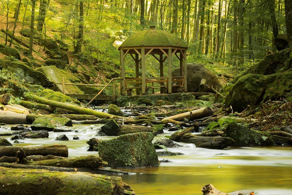 Pavilion, Moss, Wall, Nature, Green, Stone, Stone Wall