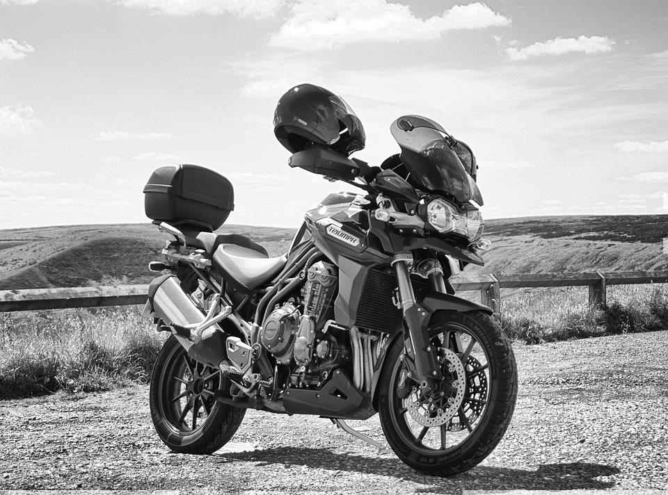 Free Photo Motorcycle Triumph Speed Motorbike Bike Racer Max Pixel