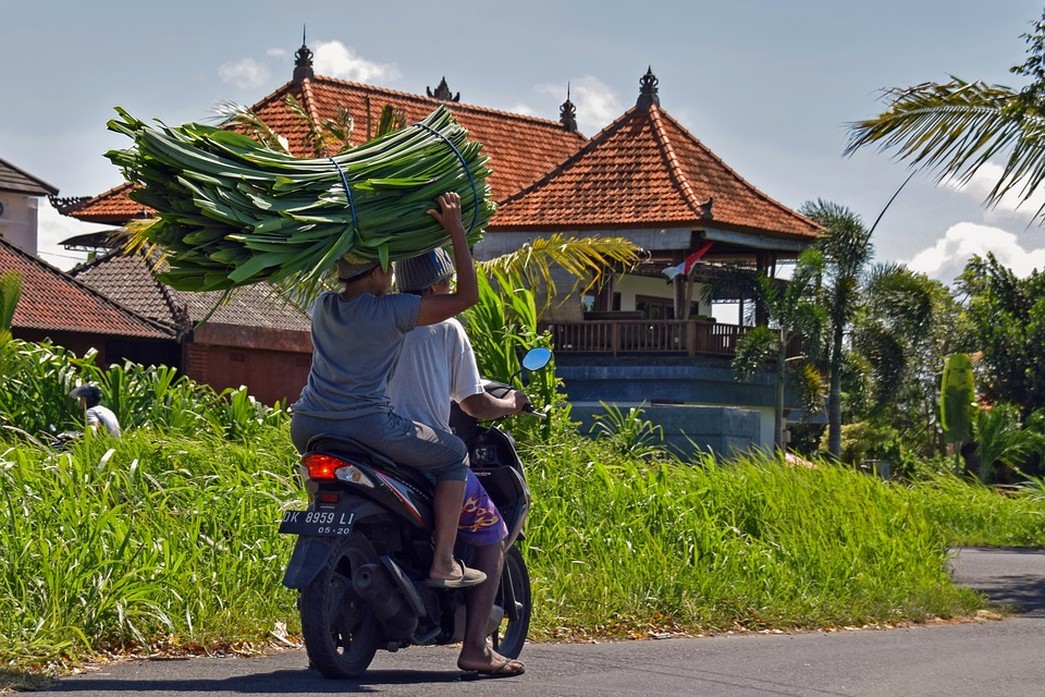 Bali, Indonesia, Travel, Motorcycle, Motorcyclist