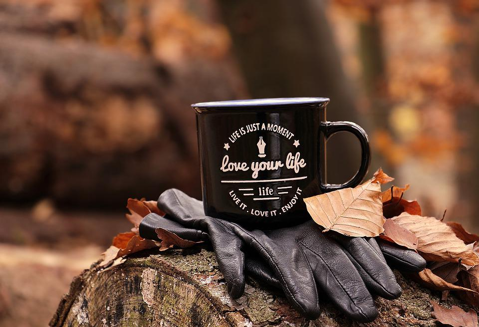 Forest, Autumn, Cup, Love Your Life, Motto, Gloves