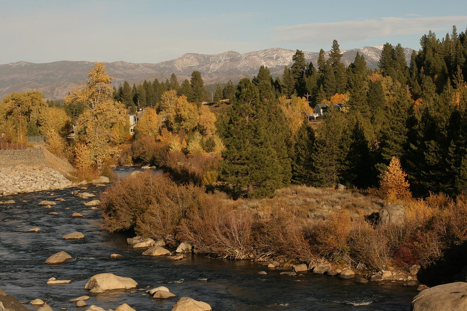 Autumn, Trees, Mountain, River, Flowing River
