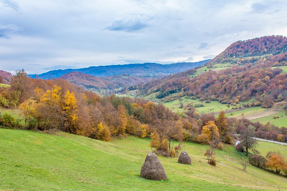 Village, Trees, Autumn, Landscape, Nature, Mountain