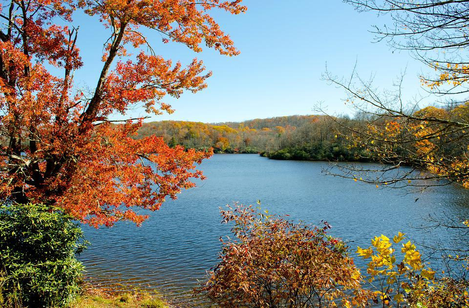 Julian Price Lake, Mountain Lake, Autumn, Fall Foliage