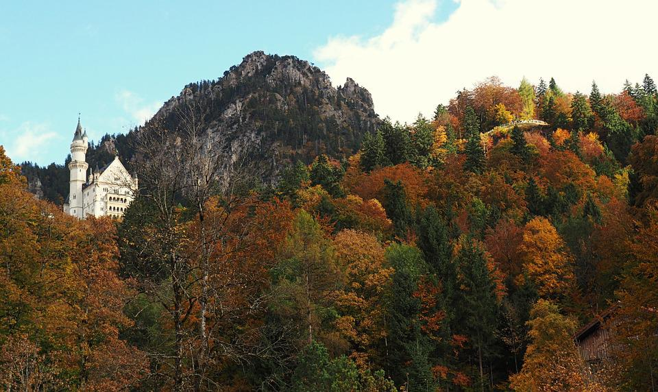 Forest, Castle, Fall, Mountain, Nature, Landscape