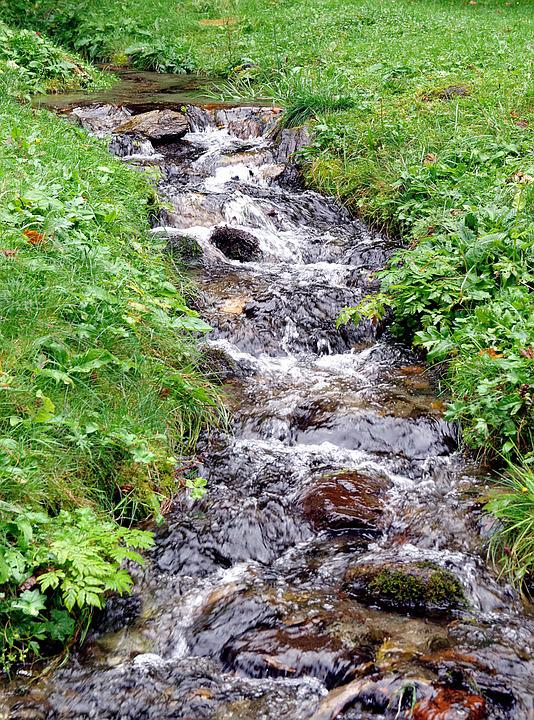 Stream, Torrent, Mountain, Water, Liquid, Cascade, Wet