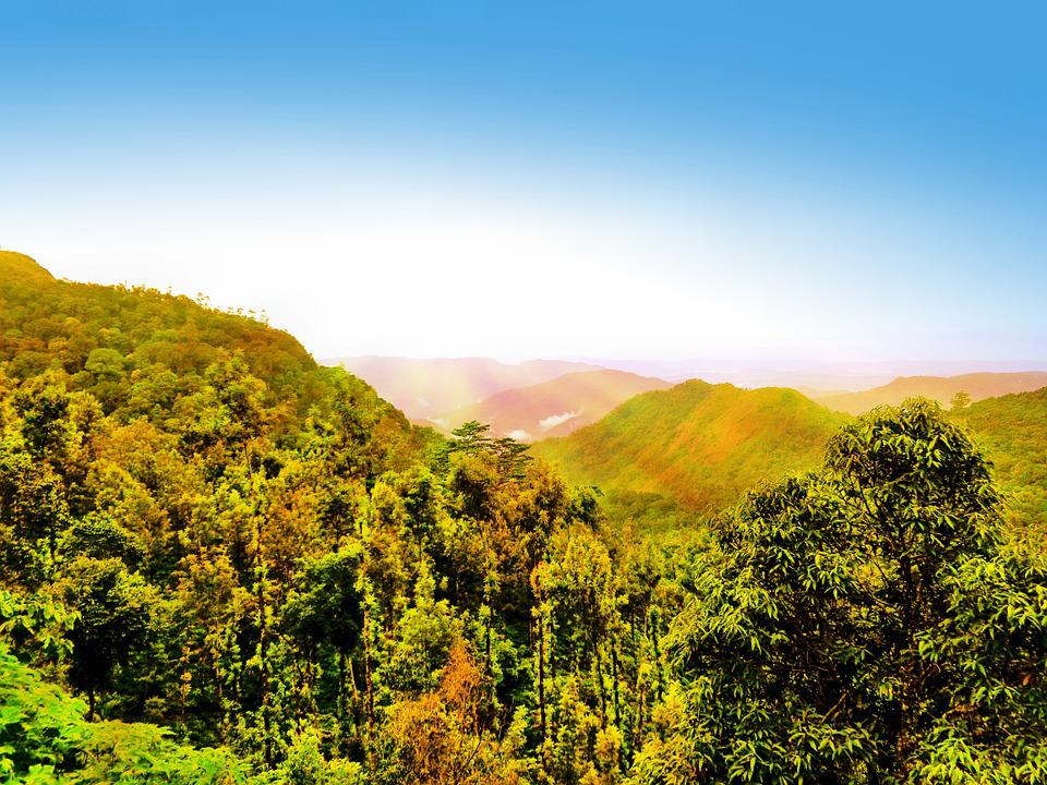 Landscape, Mountain, Hill, Trees, Nature, Outdoor