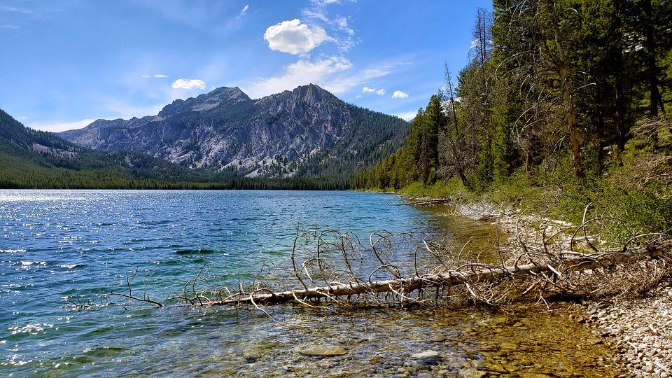 Sawtooth, Mountain, Lake, Pine Tree, Wilderness, Idaho