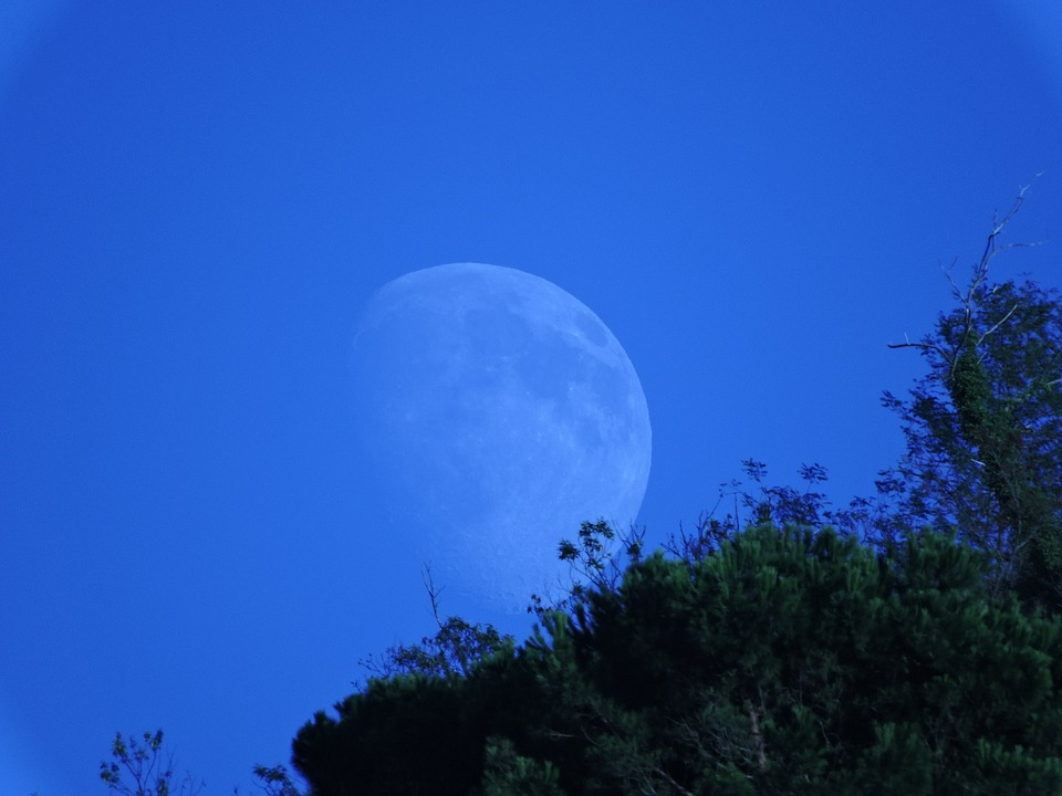 Luna, Mountain, Trees, Green, Sky
