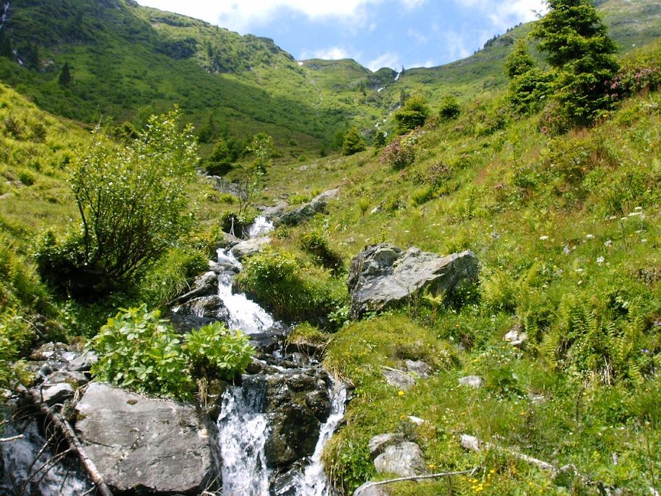 Mountain Stream, Bach, Mountains, Alpine, Alpine Walk