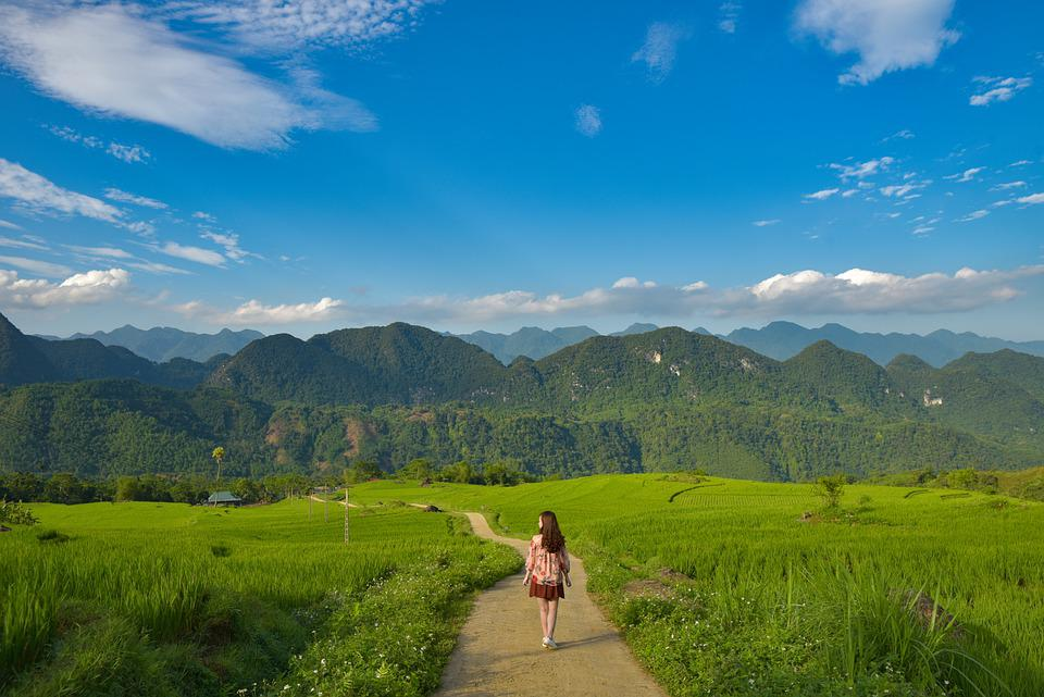 Travel, Young, Girl, Landscape, Mountain, Forest