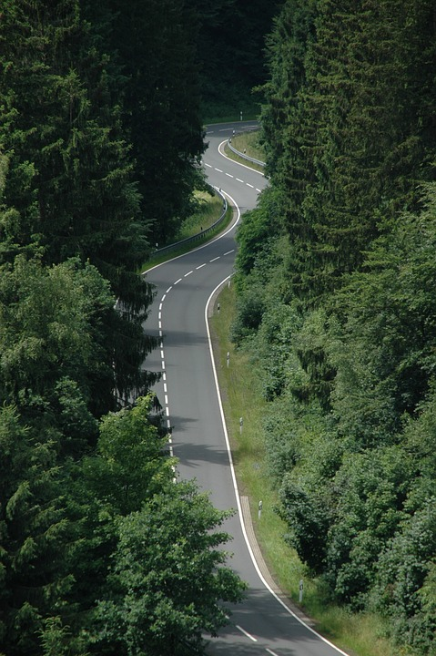 Serpentine, Road In The Forest, Curve, Mountainous