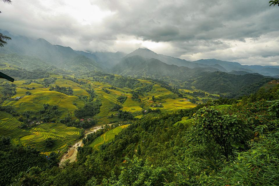 Mountains And Hills, Forest Trees, Rice Fields, Step