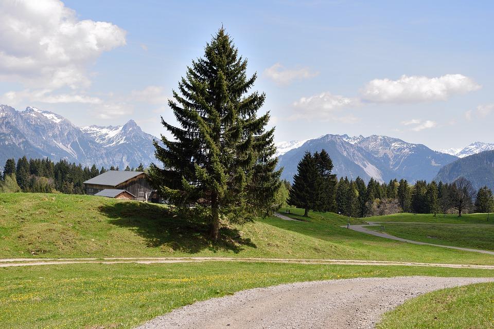 Landscape, Alpe, Ways, Away, Mountains, Nature