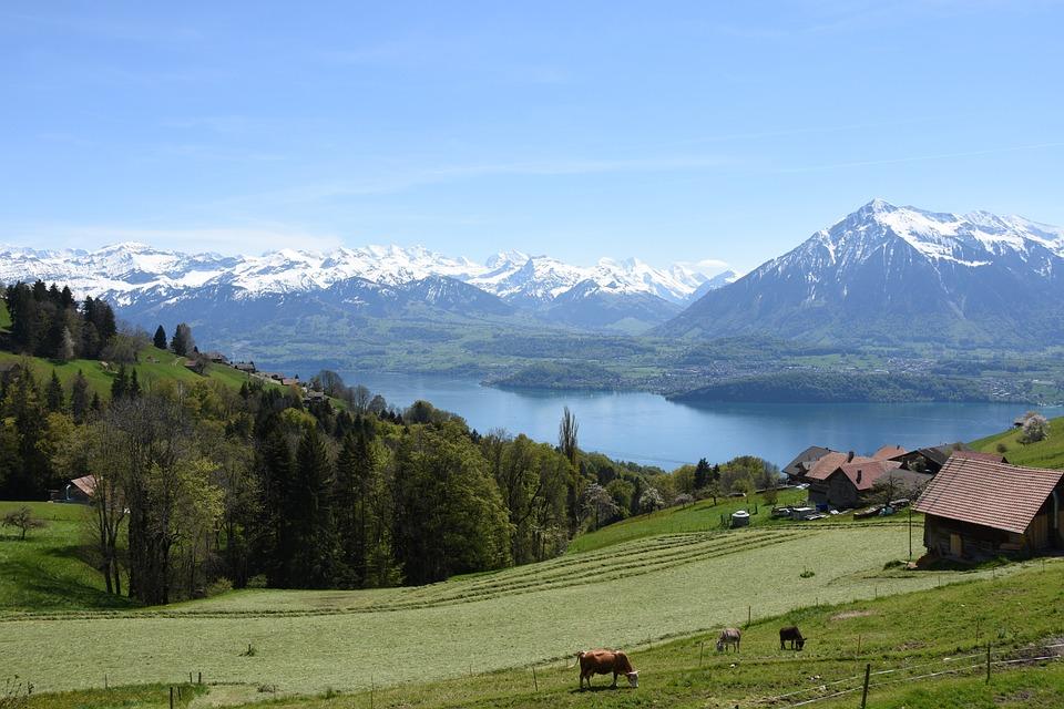 Sneezing, Lake Thun, Bernese Oberland, Mountains
