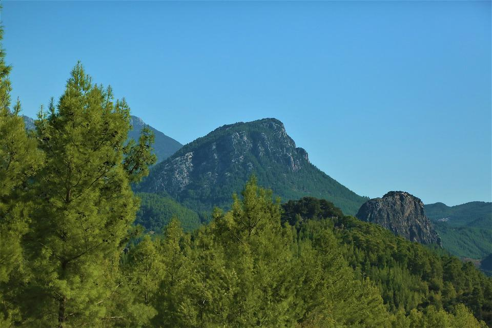 Mountains, Green, Forest, Beautiful, Tree, Landscape