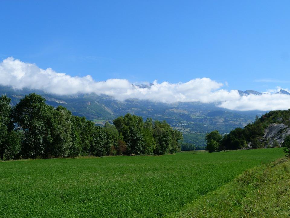 Landscape, Nature, Field, Mountains, Summer, Green