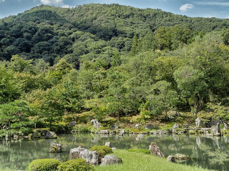 Kyoto, Japan, Mountains, Landscape, Scenic, Forest
