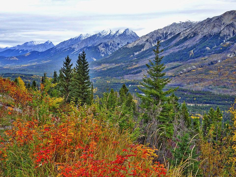 Autumn, Mountains, Forest, Rockies, Canada, Landscape