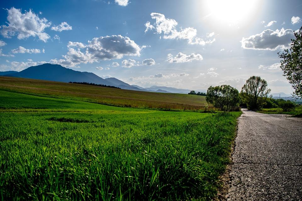 Sun, Grass, Path, Landscape, Nature, Trees, Mountains