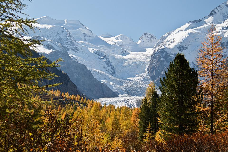 Engadin, Autumn, Larch Discoloration, Trees, Mountains