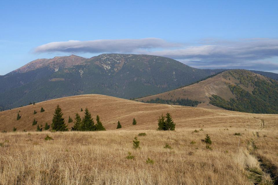 Low Tatras, Mangy, Mountains, Autumn, Hills, Country