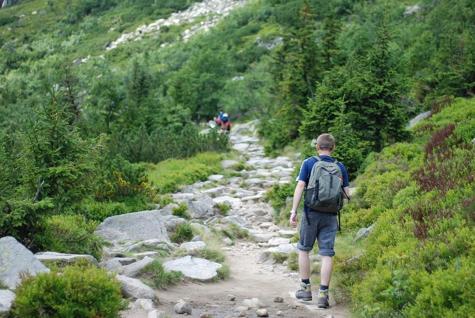 Hiking Walking, Mountain Hiking, Mountains, The Path