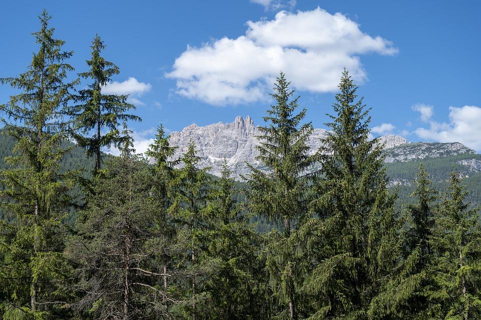 Dolomites, Holidays, Holiday, Italy, Nature, Mountains