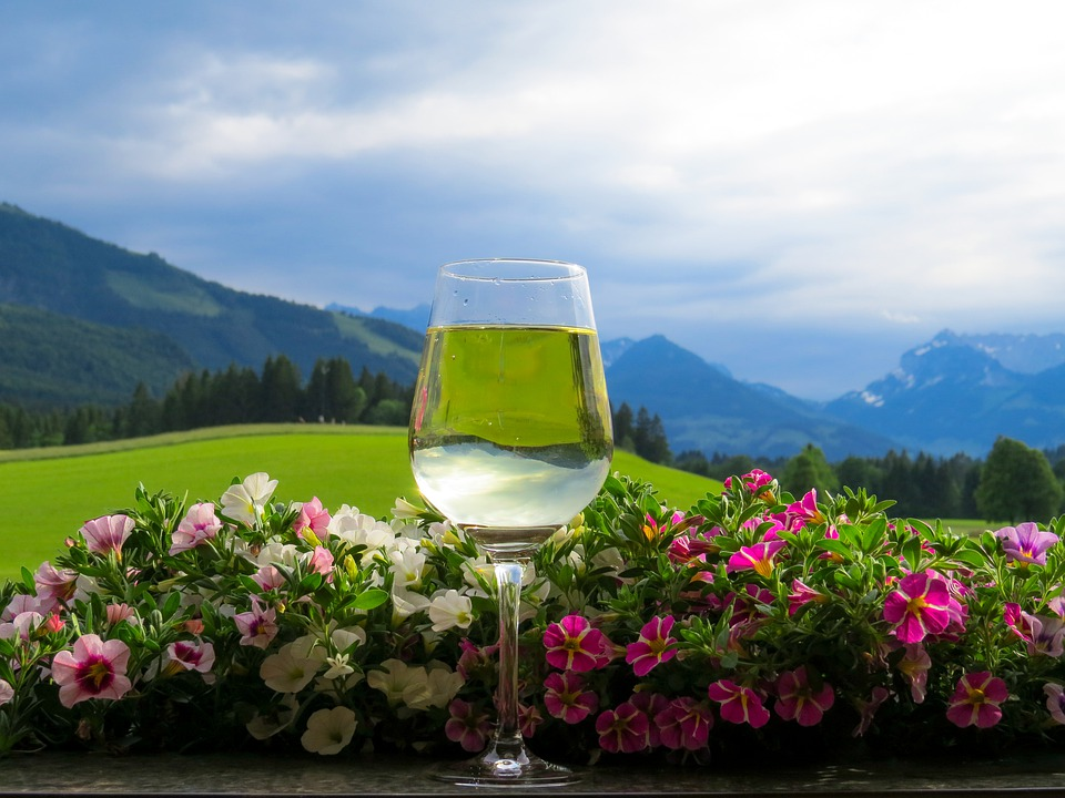 Holidays, Vacations, Nature, Mountains, Flowers, View