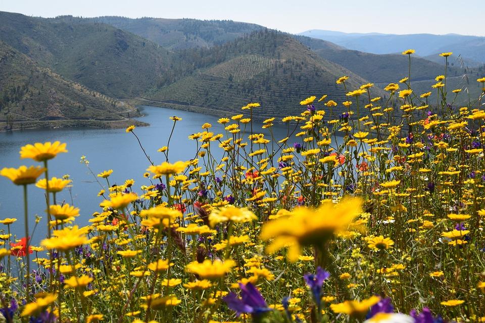 River Douro, Landscape, Mountains, Nature, Mountain