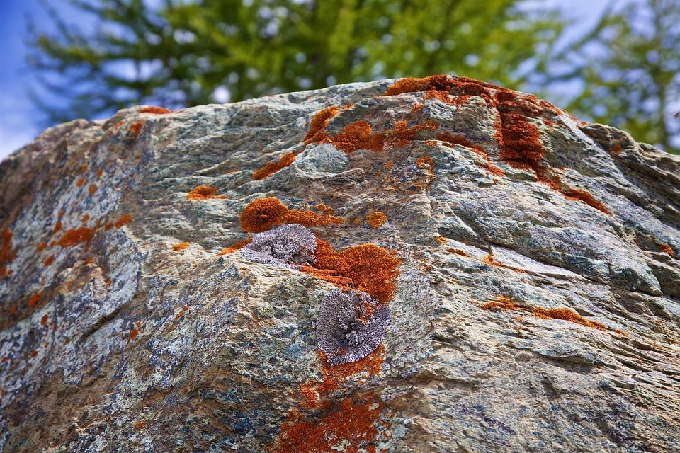 Lichen, Stone, Nature, Mountains, Rock, Stones