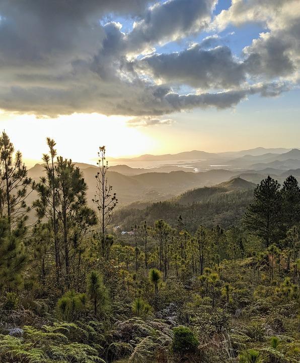 Forest, Sunset, Horizon, Mountains, Landscape, Sunny