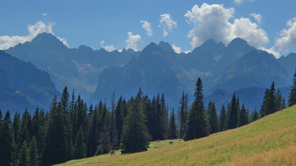 Tatry, Mountains, Rusinowa Logs, Tops, The High Tatras