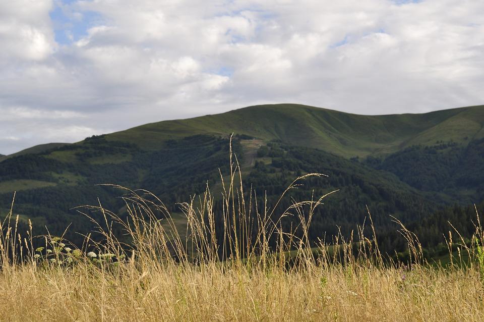 The Carpathians, Meadow, Grass, Mountains, Landscape
