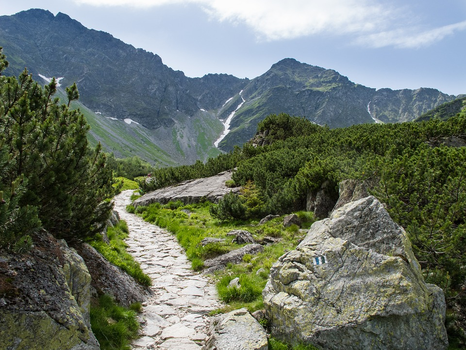 Country, The Landscape, Mountains, Nature, Path