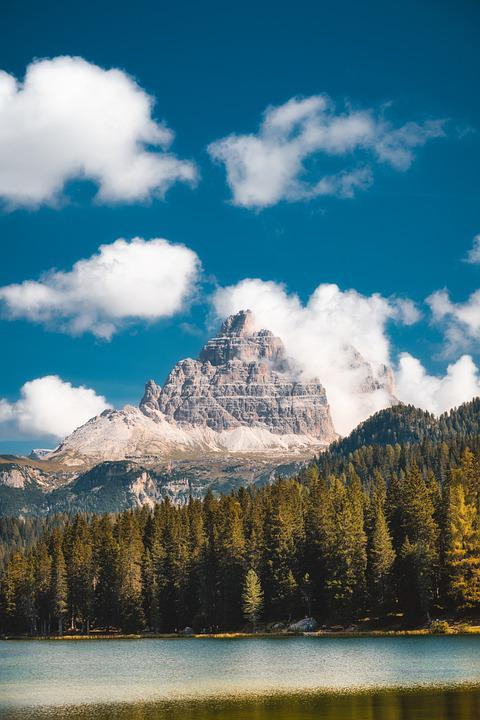 Lake, Mountains, Forest, Trees, Conifers, Coniferous
