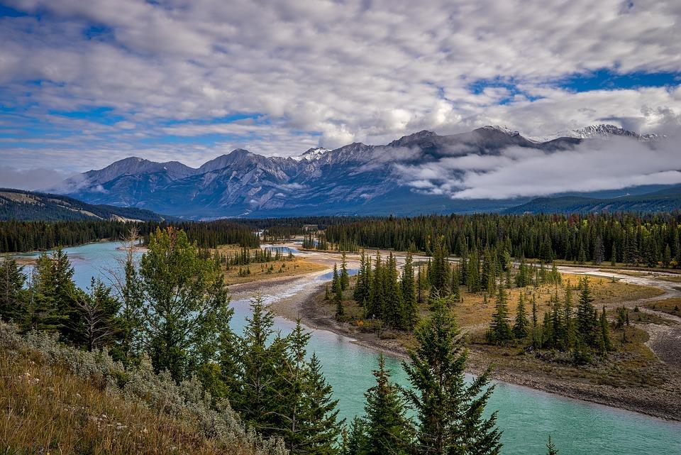 Jasper National Park, River, Mountains, Trees, Forest