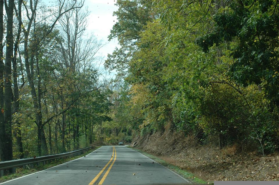 Road, Woods, Mountains, Forest, Path, Nature, Landscape