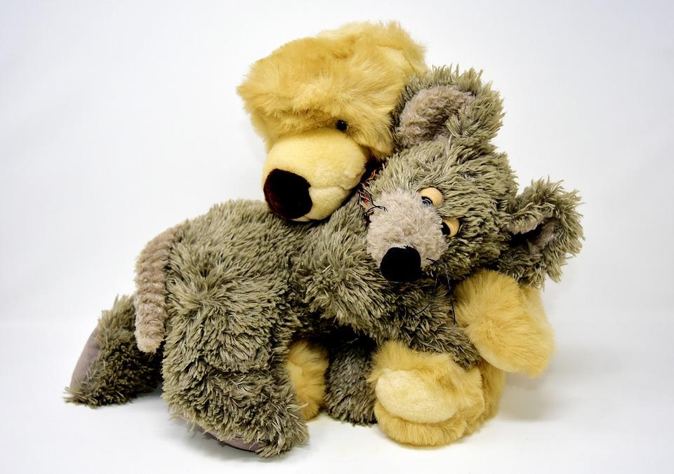 Bear, Mouse, Soft Toy, Stuffed Animal, Toys, Teddy Bear