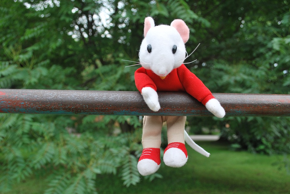Mouse, Toy, Hanging, Outside, Nature, Stuart