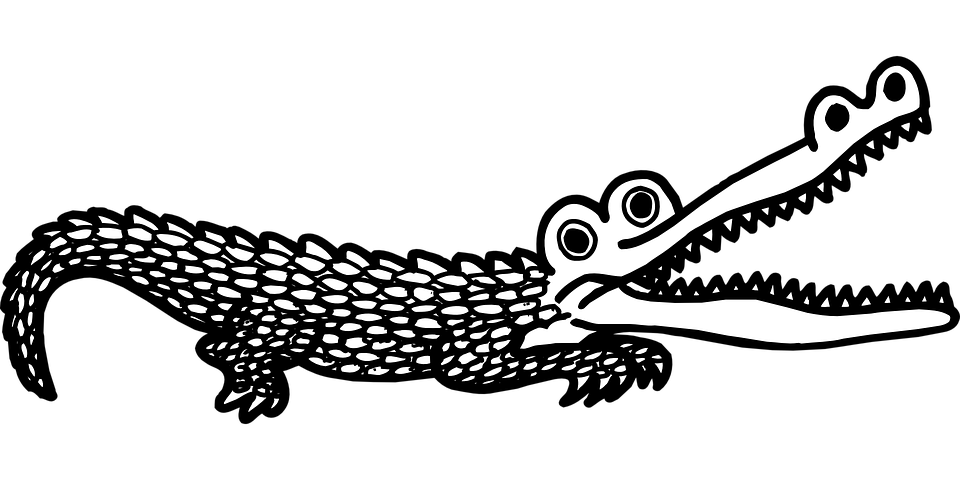 Open, Mouth, Scales, Teeth, Alligator