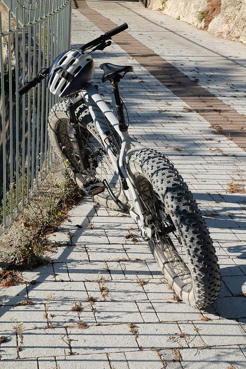 Mtb, Sport, Action, Bicycle Tour, Cycling, Leisure