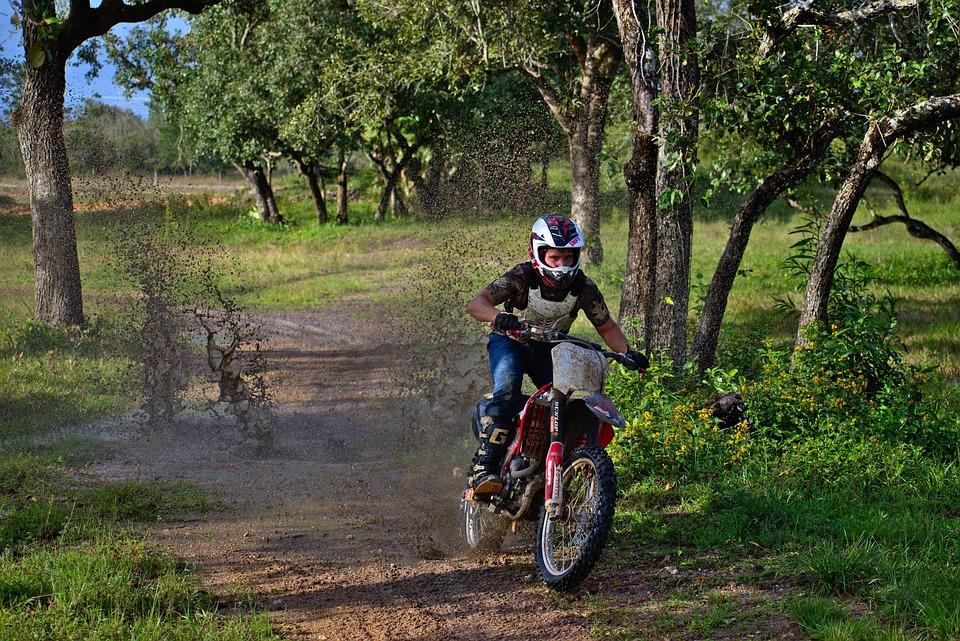 Mud, Splash, Action, Rider, Wheel, Tree, Outdoors