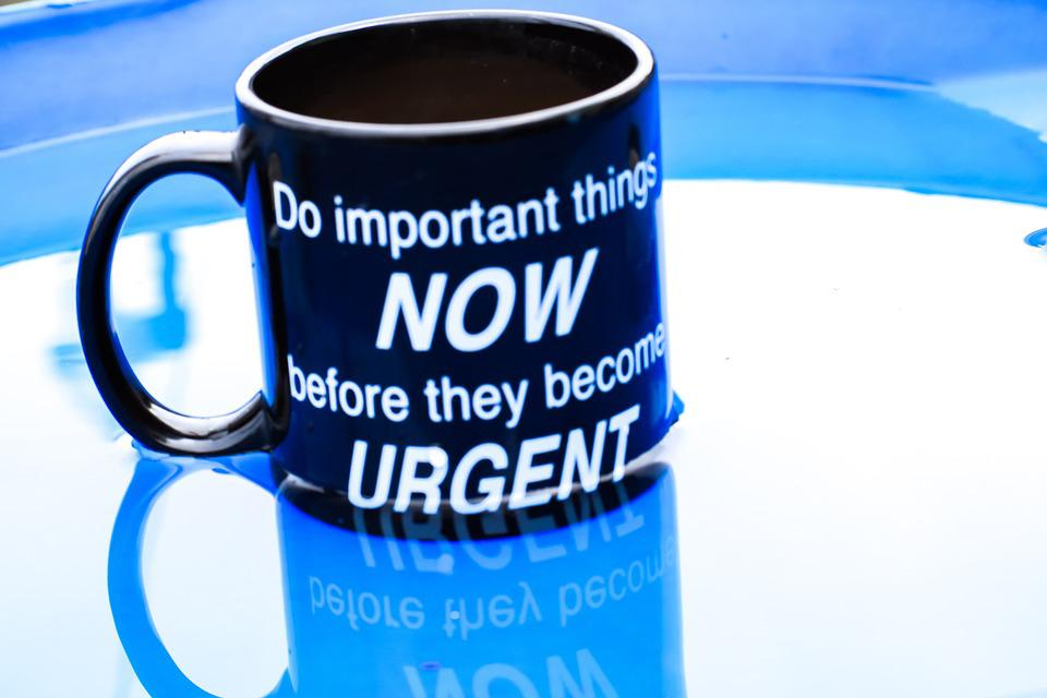Mug, Quotes, Text, Phrase, Word, Sentence, Saying