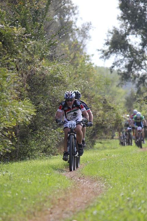 Cycling, Mtb, Bike, Sport, Muntainbike