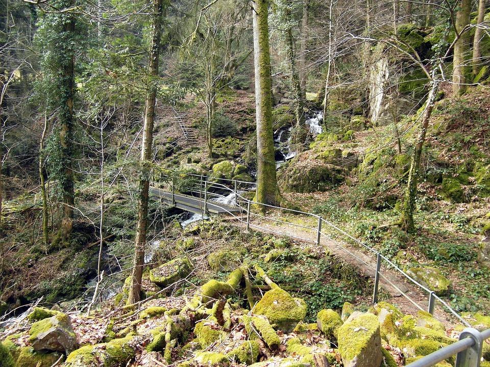 Wieladingen, Murg Valley, Black Forest, High Rhine