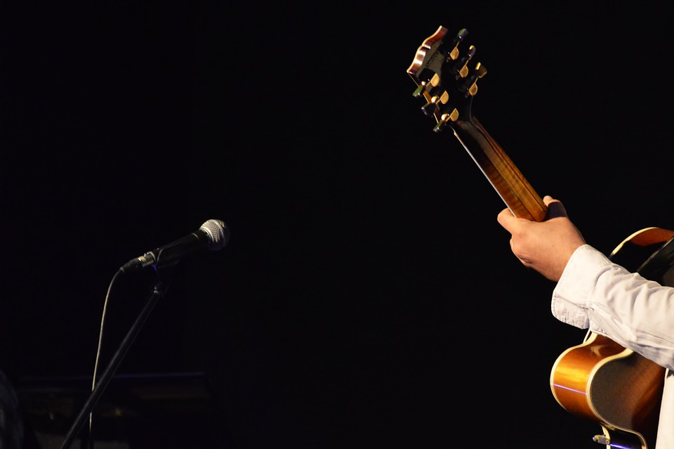 Guitar, Musician, Guitarist, Music, Tool, Concert
