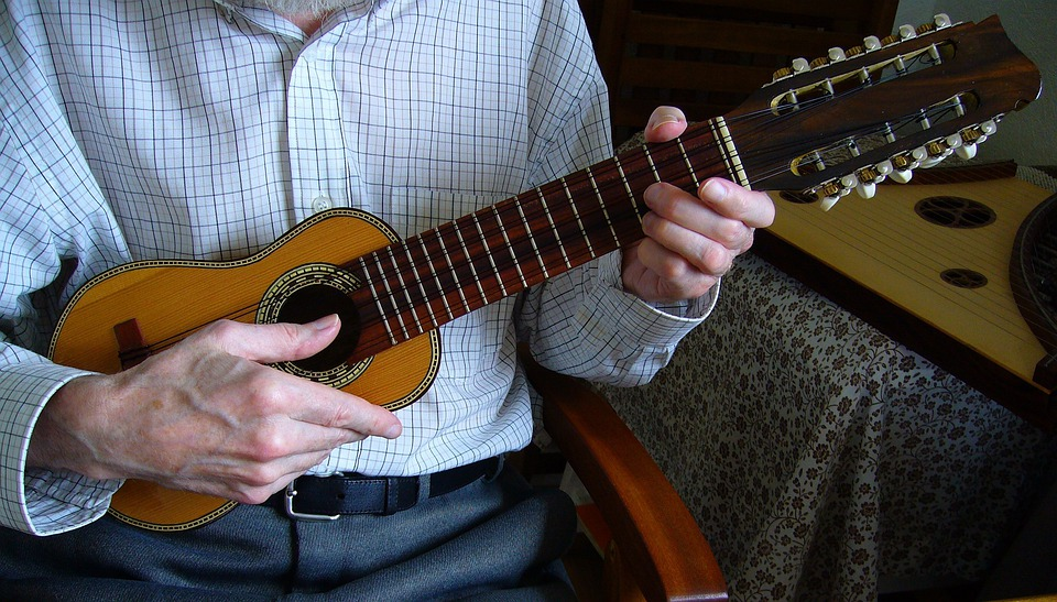 Charango Andean, Stringed, Instrument, Music Musical