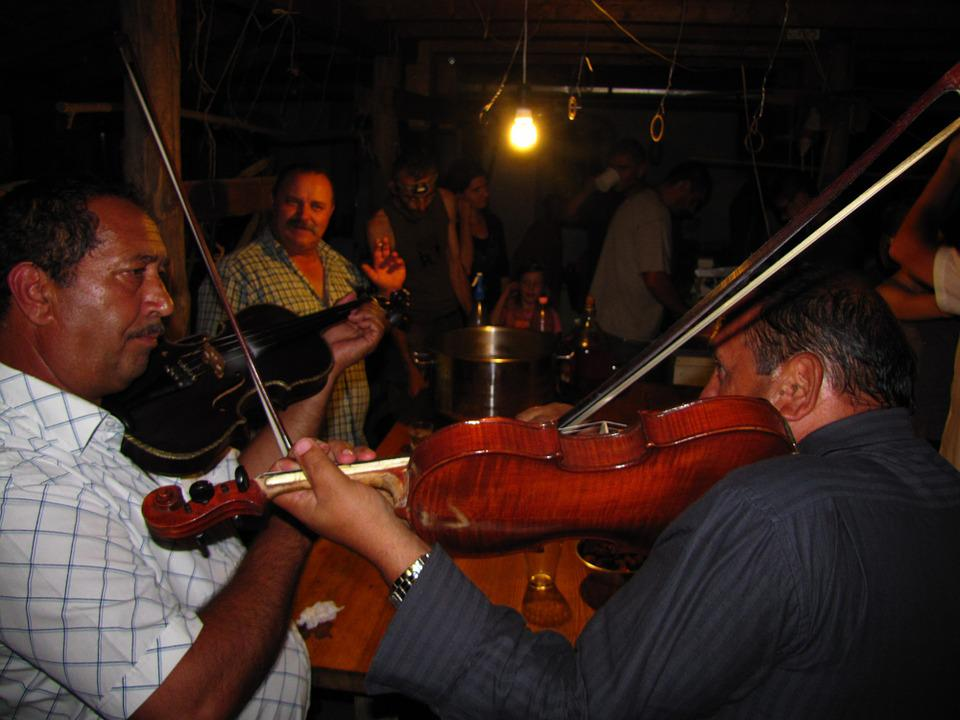 Violin, Music, Musician, Plays Music, Revel, Party