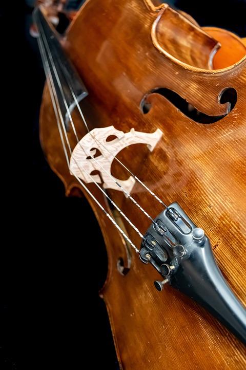 Cello, German, Old, Rare, String, Classical, Musician